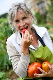 Senior woman tasting fresh tomatoes from garden