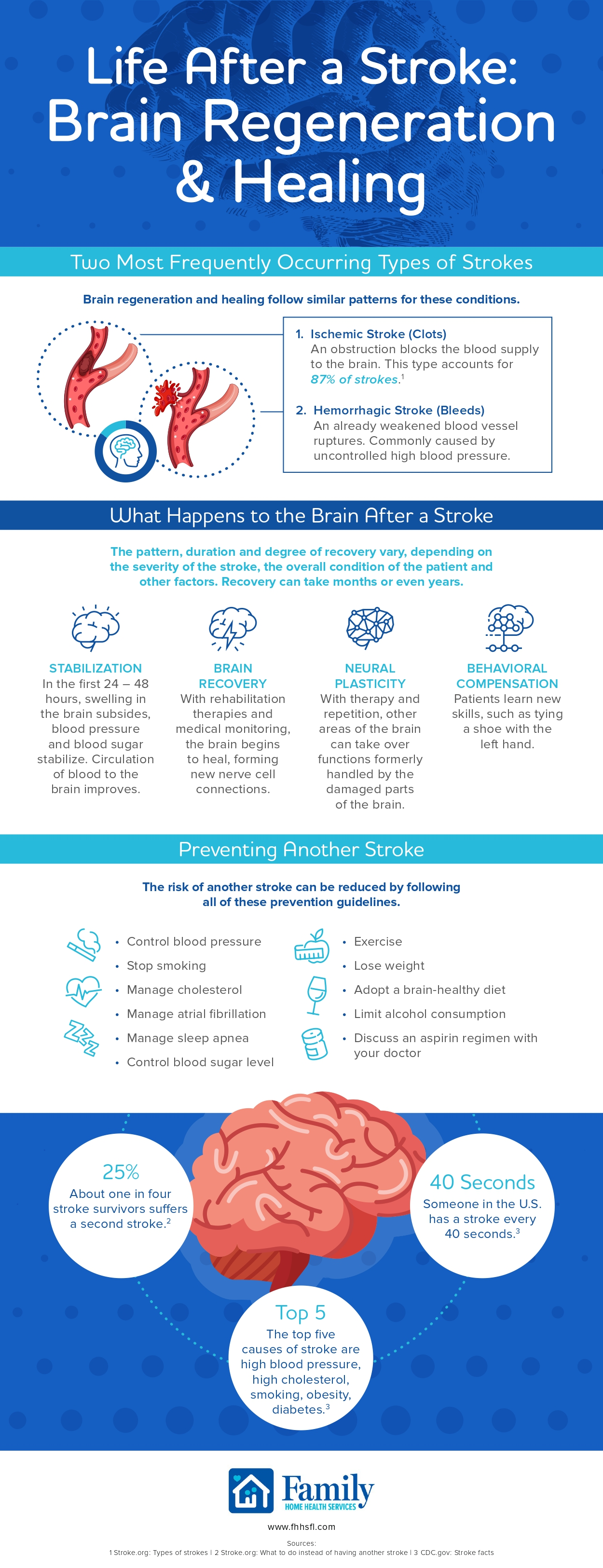 Life After a Stroke: Brain Regeneration and Healing