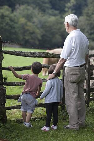 grandfather-with-grandchildren-outdoors looking at livestock on a farm