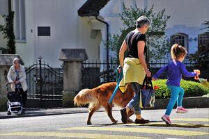 walking dog grandmother
