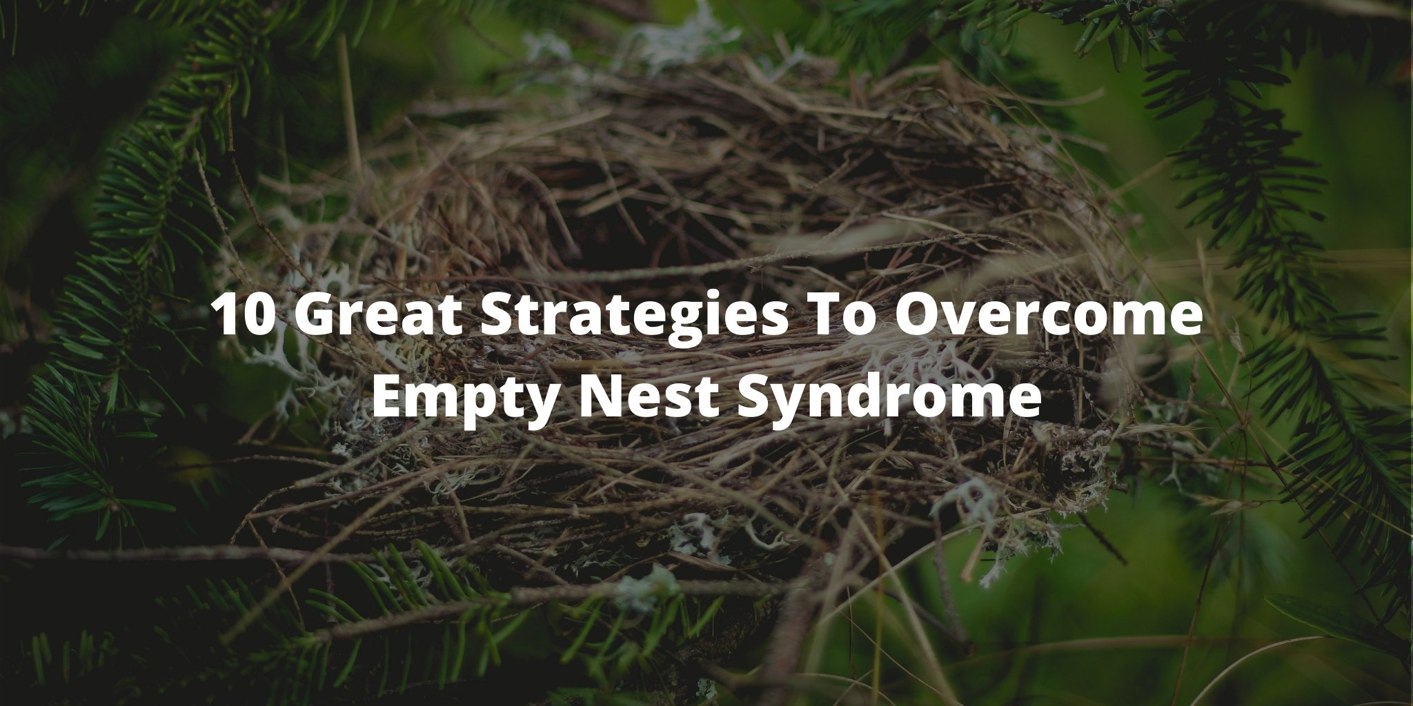 10 Great Strategies To Overcome Empty Nest Syndrome
