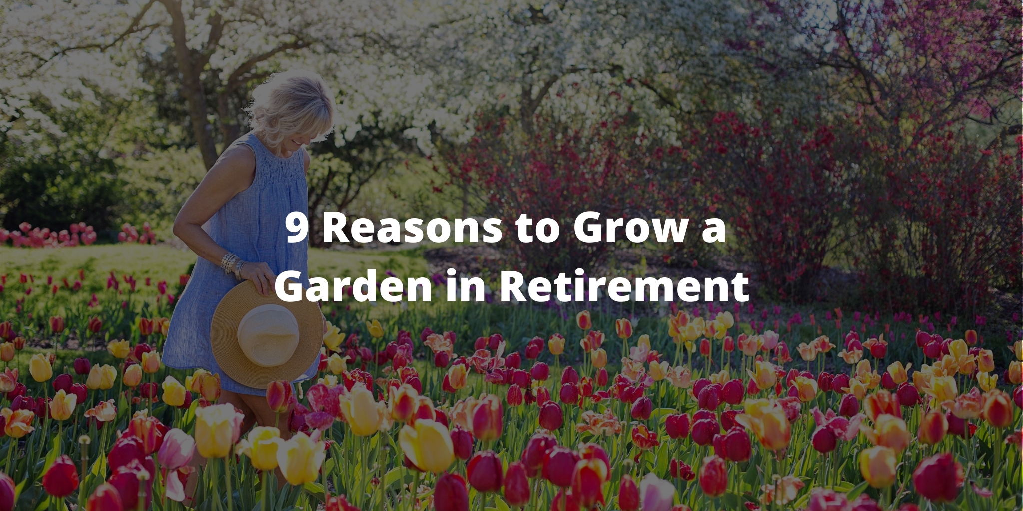 9 Reasons to Grow a Garden in Retirement