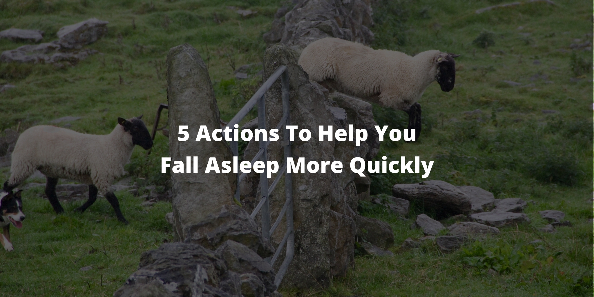 5 Actions To Help You Fall Asleep More Quickly