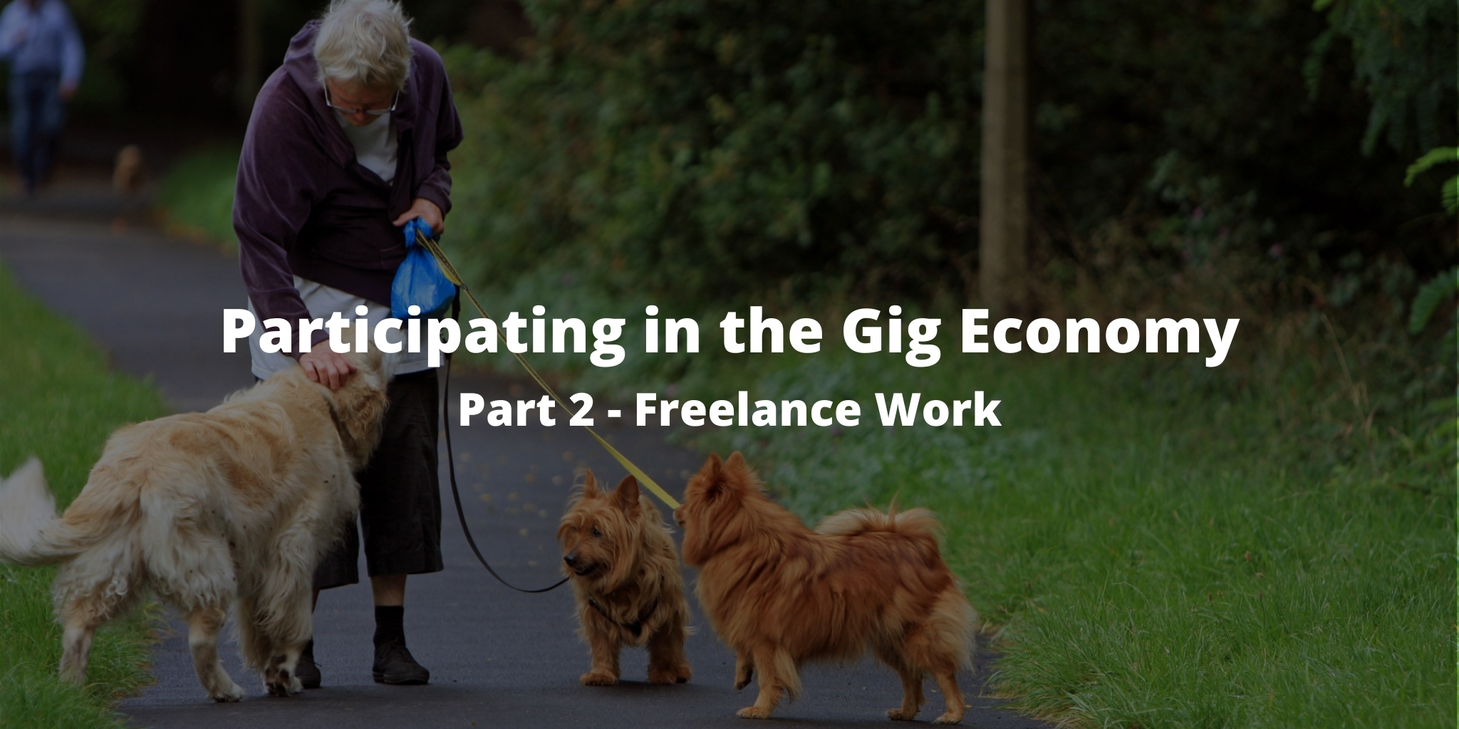 Participating in the Gig Economy: Part 2 - Freelance Work