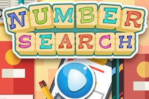 Number Search